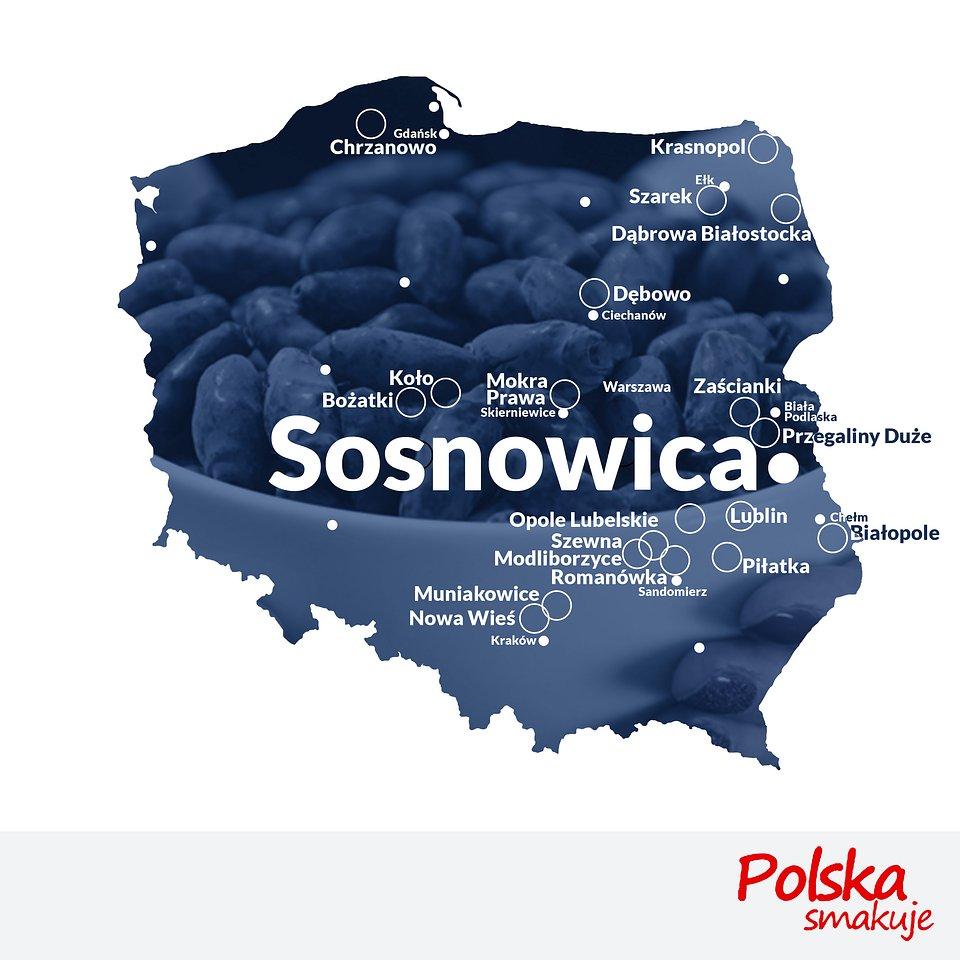 mapa-jagoda-kamczacka_SOSNOWICA.jpg