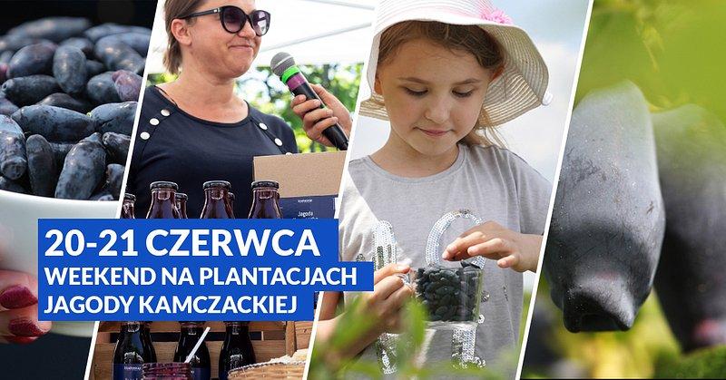 kamczackie-plantacje_FB_1200x628_02.jpg