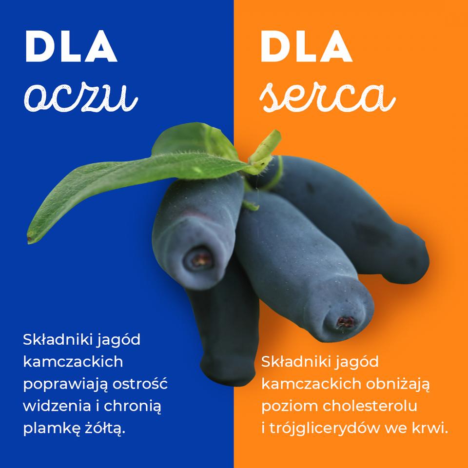 PAP Zdrowie_jagoda kamczacka (4).png