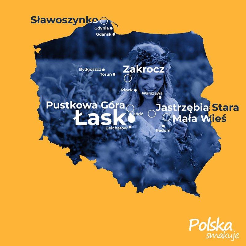 Borówkobranie_MAPA_Łask.jpg