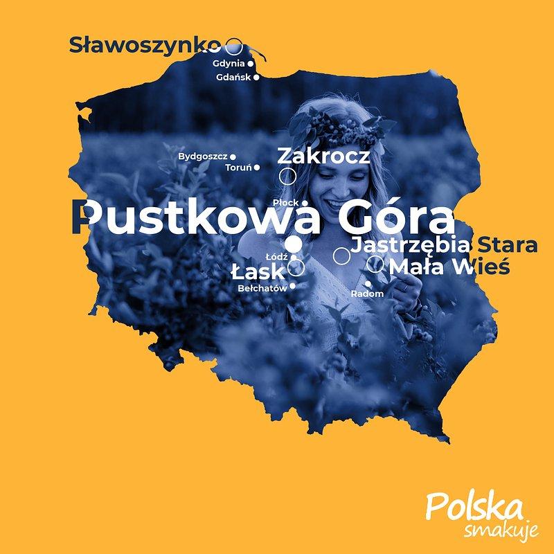 Borówkobranie_MAPA_Pustkowa-góra.jpg