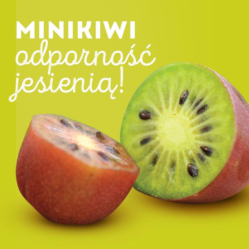 Czas na polskie minikiwi (12).jpg