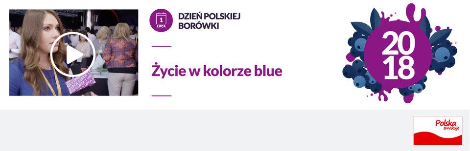 Życie w kolorze blue.jpg