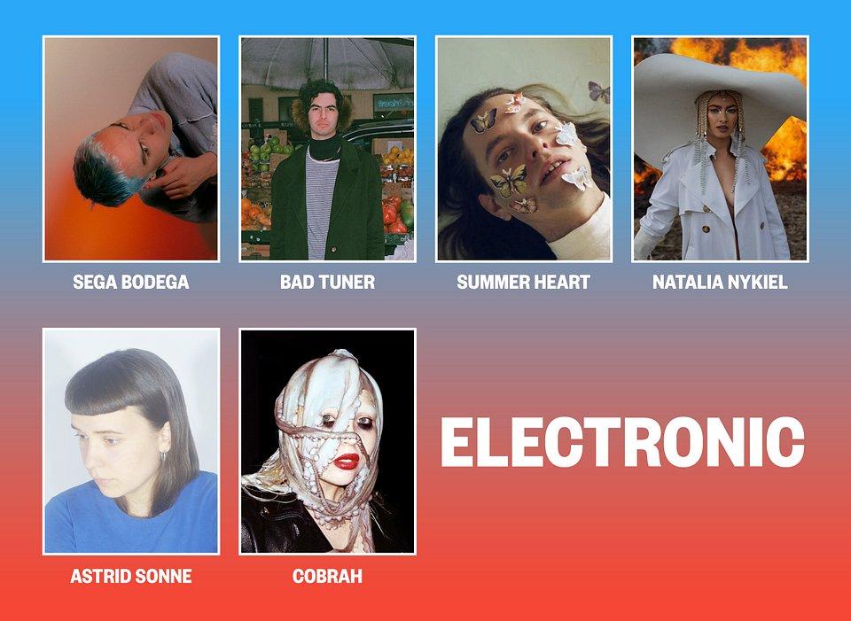 1-13_electronic-1.jpg