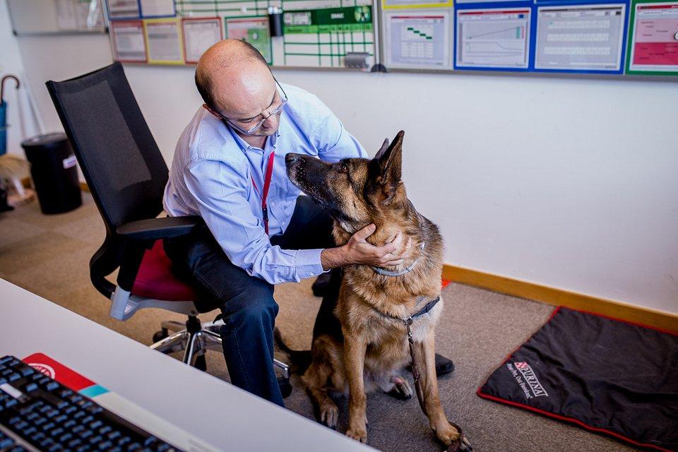 Pets no trabalho | Nestlé PURINA