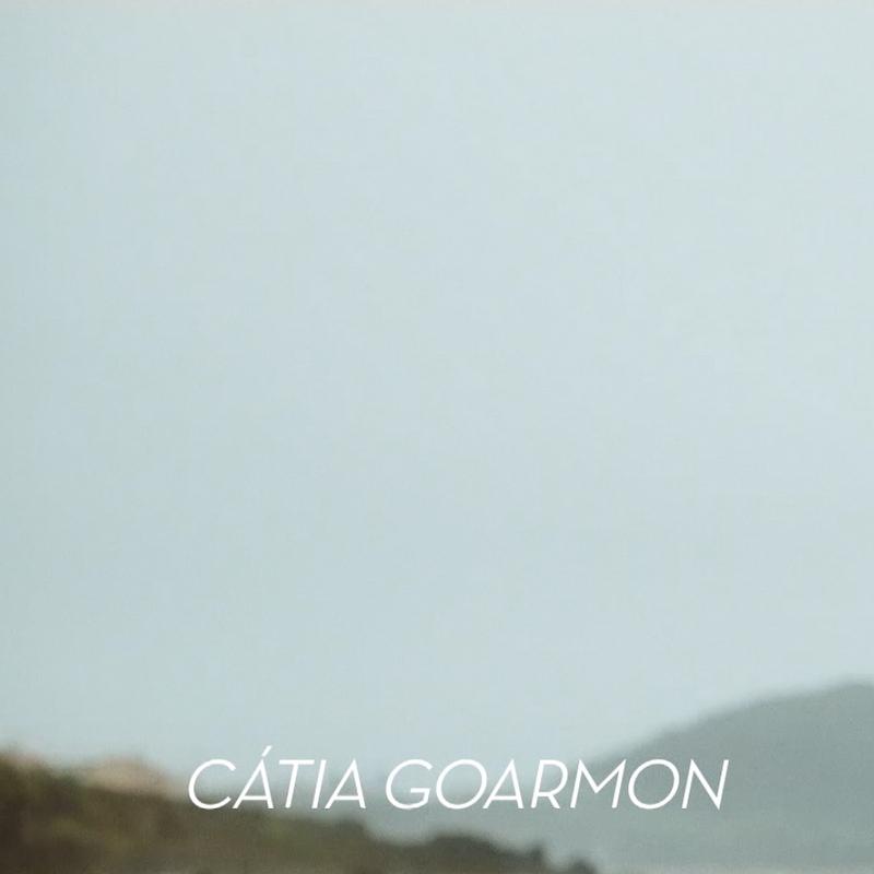 catia1.PNG