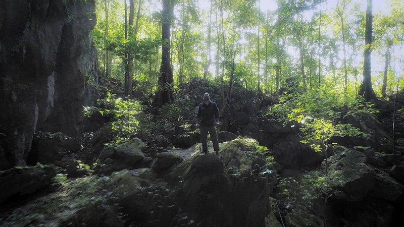 Fuga na Selva.jpg