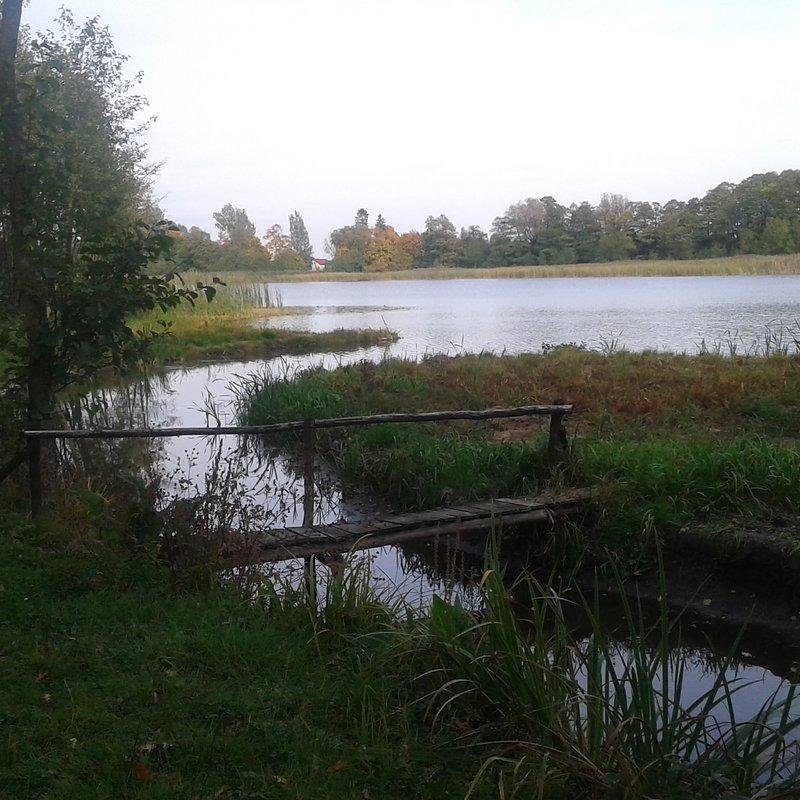 OP-Z-67 jezioro-jesień2 Marcin Zieliński Szczutowo.jpg