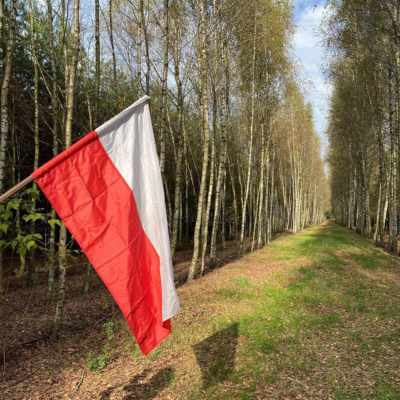 OP-Z-21 Weronika Bylińska spacer w lesie Bielsk.jpg