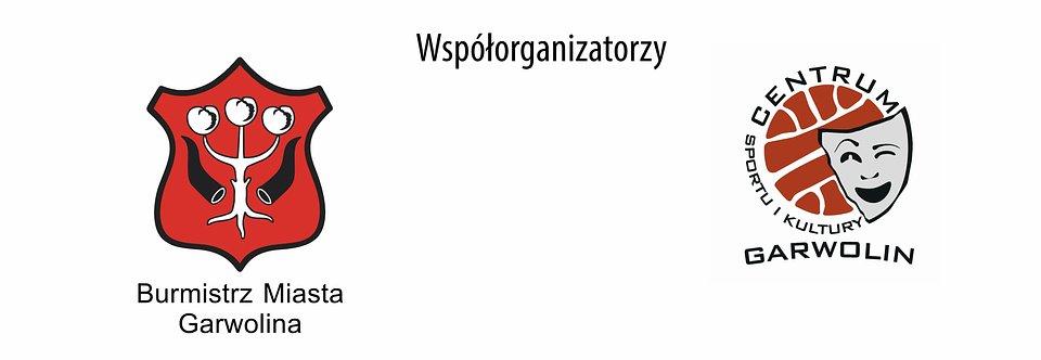 logotypy-saturator — kopia.jpg