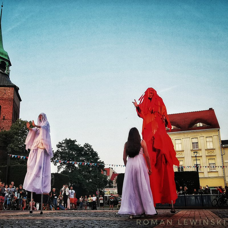 Fin Amor, fot. Roman Lewiński.jpeg