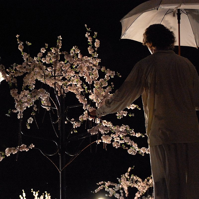chery_orchard_10_fot_archiwum_Teatru (3).JPG