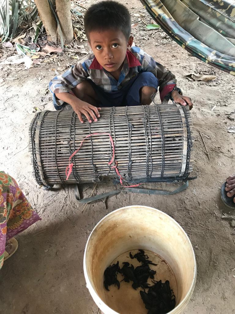 Szokujące potrawy - Kambodża (3).jpeg