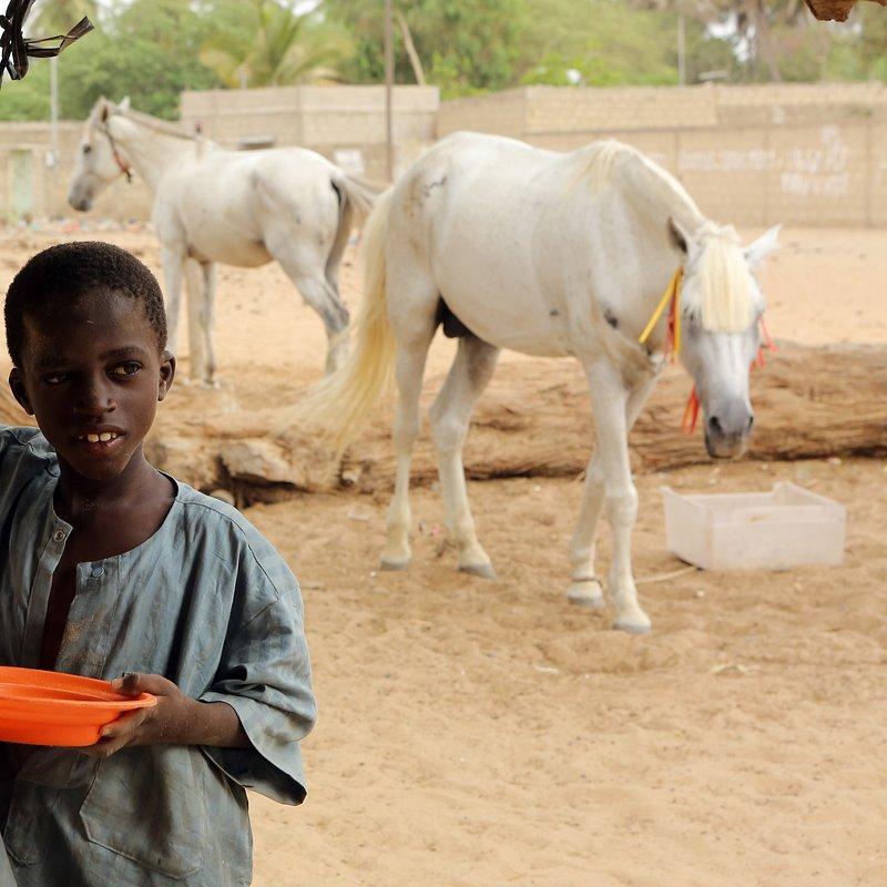 Efekt Domina - Senegal, fot. Tatiana Jachyra (14).JPG