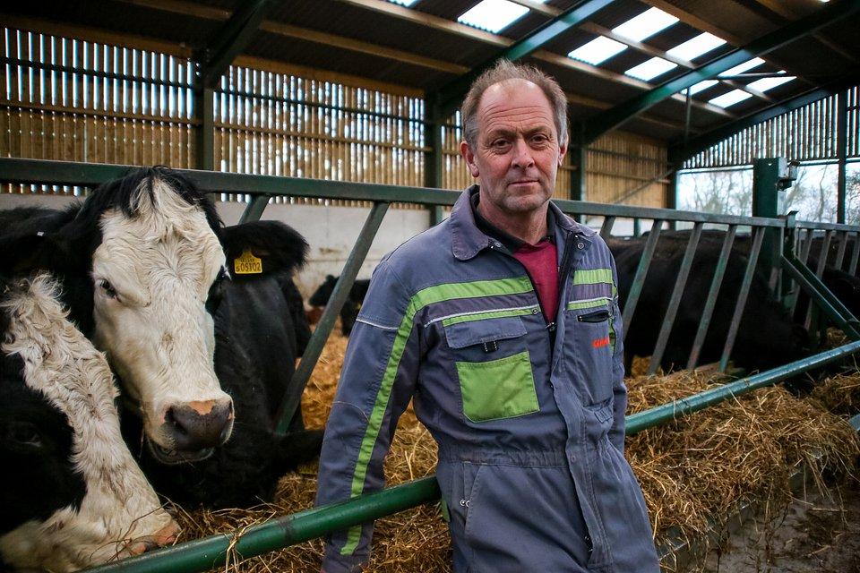 Weterynarz z Yorkshire
