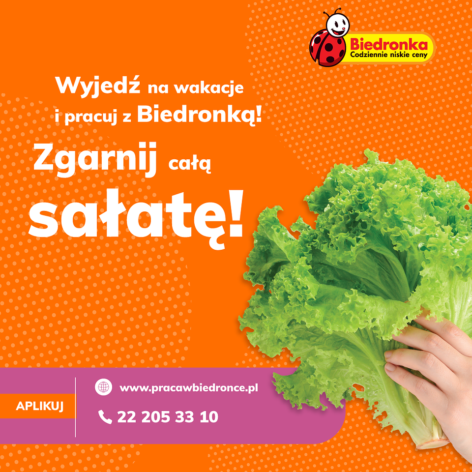 Biedronka_praca wakacyjna.png