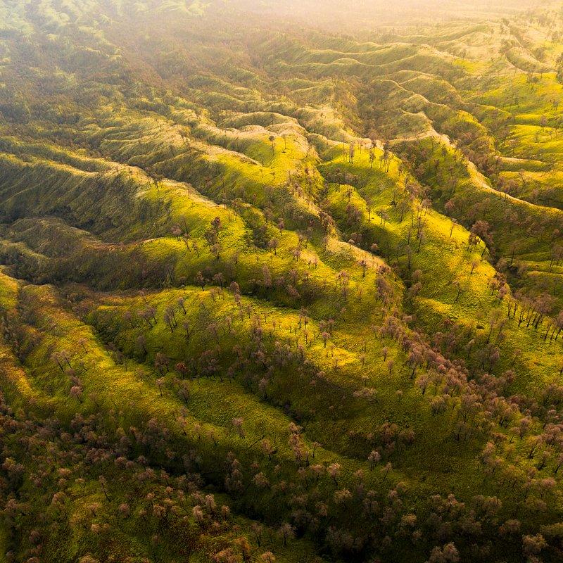 The valleys of Ijen volcano by Hugo Healey (Indonesia).jpg