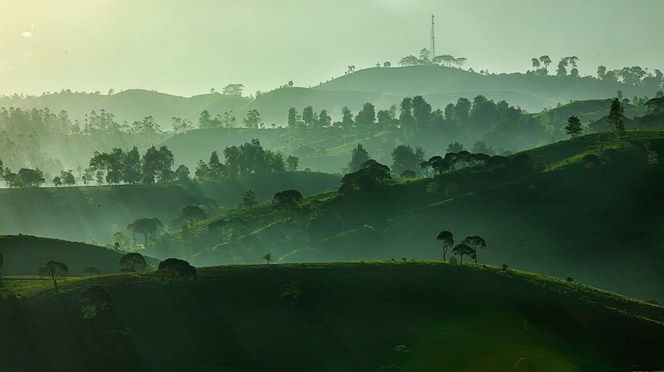 Green landscape in Indonesia (Dikye Ariani/AGORA images)
