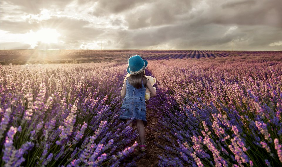 A little girl running through the fields of lavender in Guadalajara, Spain (Francisco Lopez-Serrano Baeza/AGORA images)