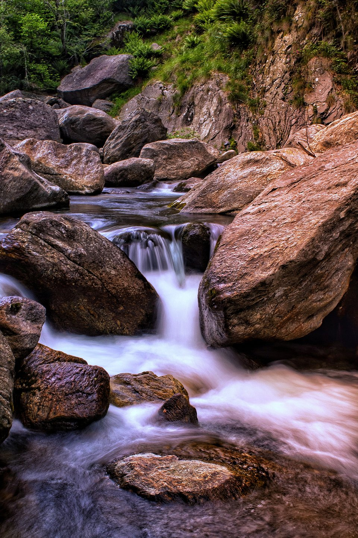 Shot taken in Val Grande National Park, Italy (Rockson  Armaah/AGORA images)