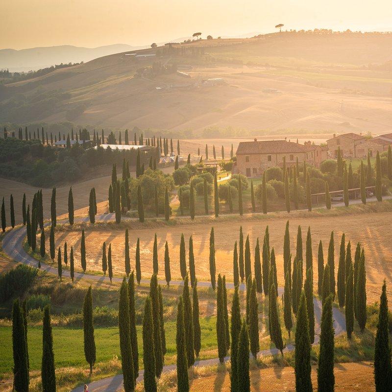'A beautiful road in Tuscany', Italy.jpg
