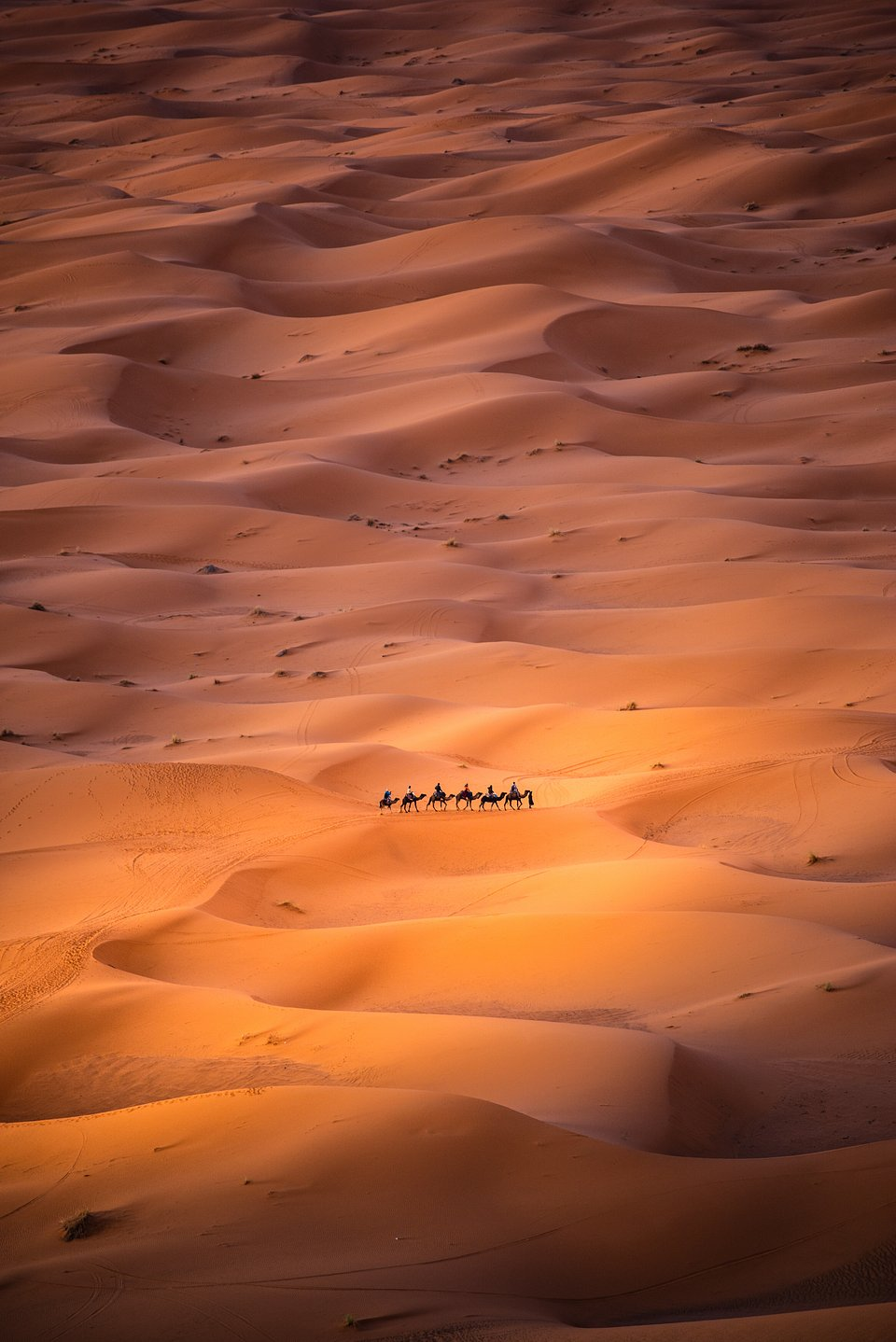 The shot was taken from a high dune in Morocco, where Nomads are moving through the Sahara desert.(Carles Alonso/Agora)