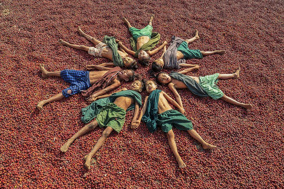 Group of boys resting on an infinite quantity of plums in Myanmar (Hla Moe Naing/AGORA images)
