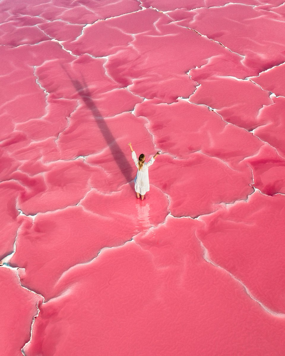 Lake Hillier is a natural wonder off the south coast of Western Australia (Boyan Ortse/AGORA images)