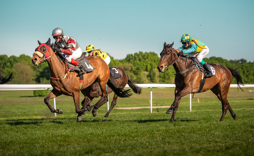Women-only horse racing tournament in Cologne, Germany  (A.Rosenthal/AGORA images)