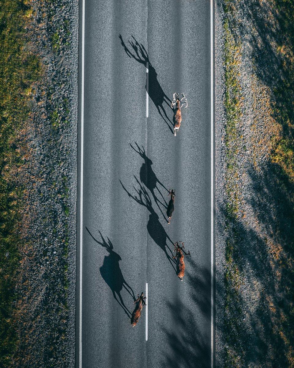 📍Russia (Yura Borschev/AGORA images)