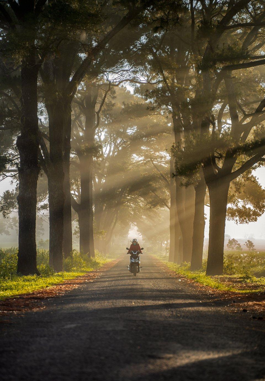 📍Vietnam (Nguyen Quang Thanh/AGORA images)