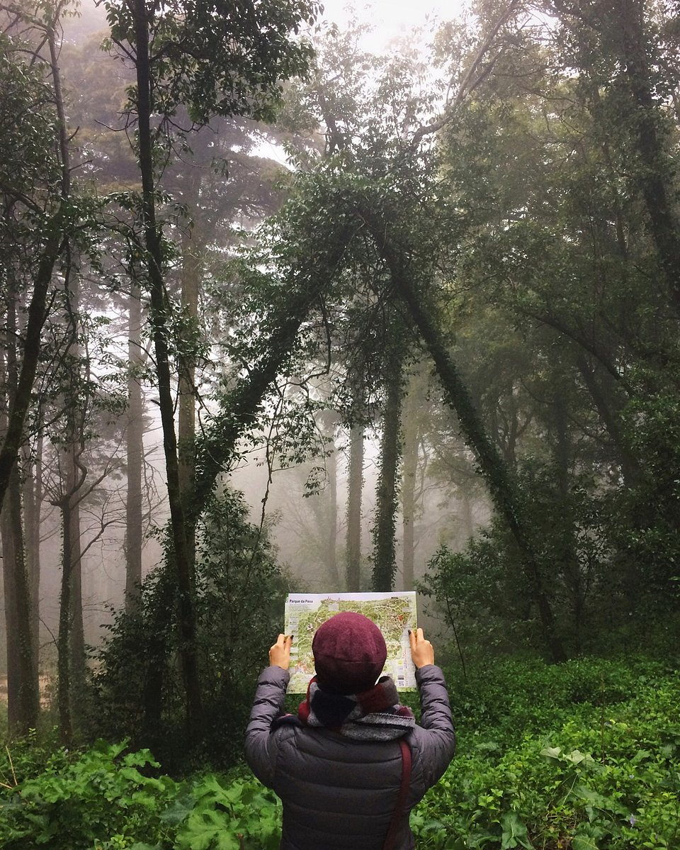 📍Sintra-Cascais Natural Park, Portugal (Ksenia Zaiets/AGORA images)