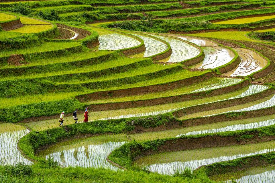 📍Kayah, Myanmar (Phyo Moe/AGORA images)