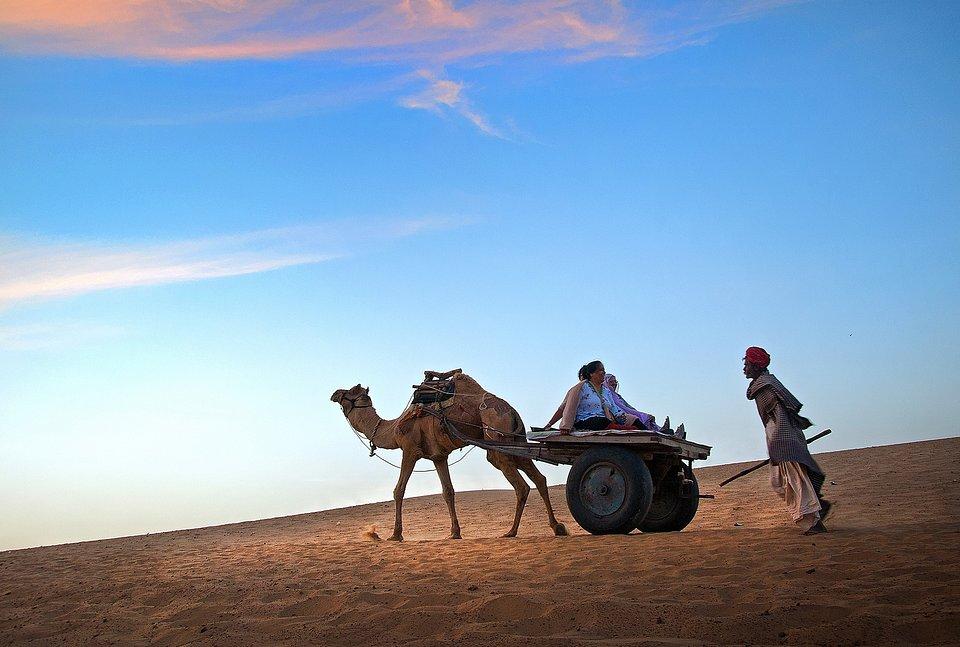 📍Thar desert, India (Pranab Basak/AGORA images)