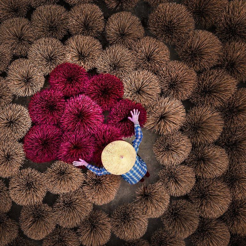 'Flower' Khan Phan:AGORA images.jpg