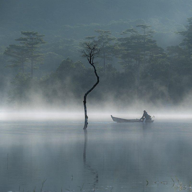 'Morning in Tuyen Lam Lake' Khan Phan:AGORA images.jpg