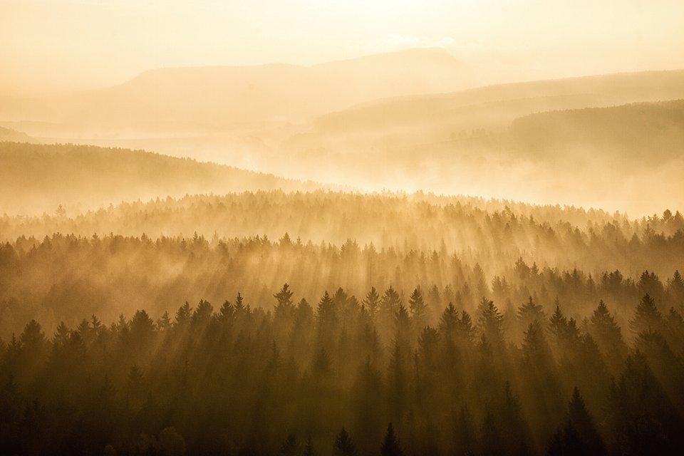 Location: Mount Pfaffenstein, Saxon Switzerland