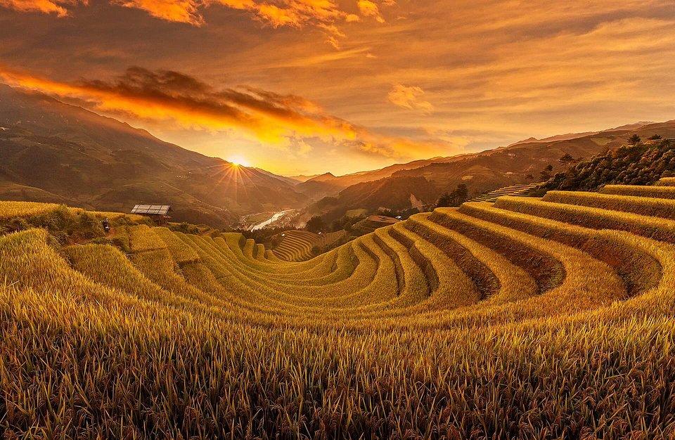 Location: Mu Cang Chai, Vietnam
