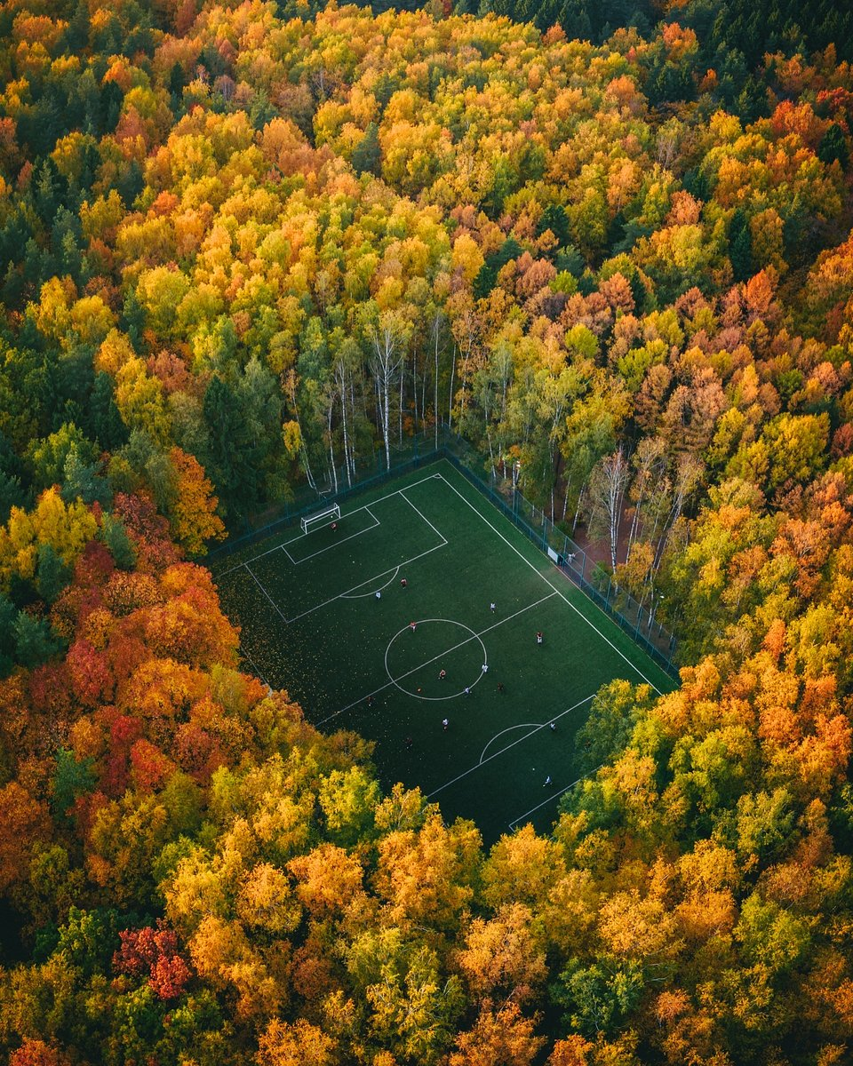 'Soccer in the woods' by @borsch, #Autumn2019 Hero