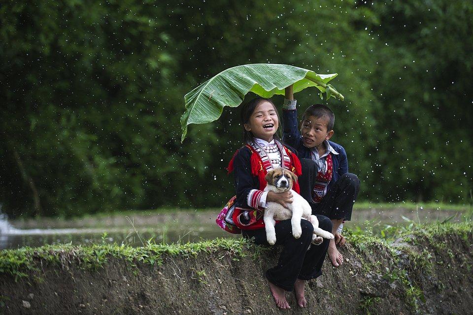 Location: Hoang Su Phi, Vietnam