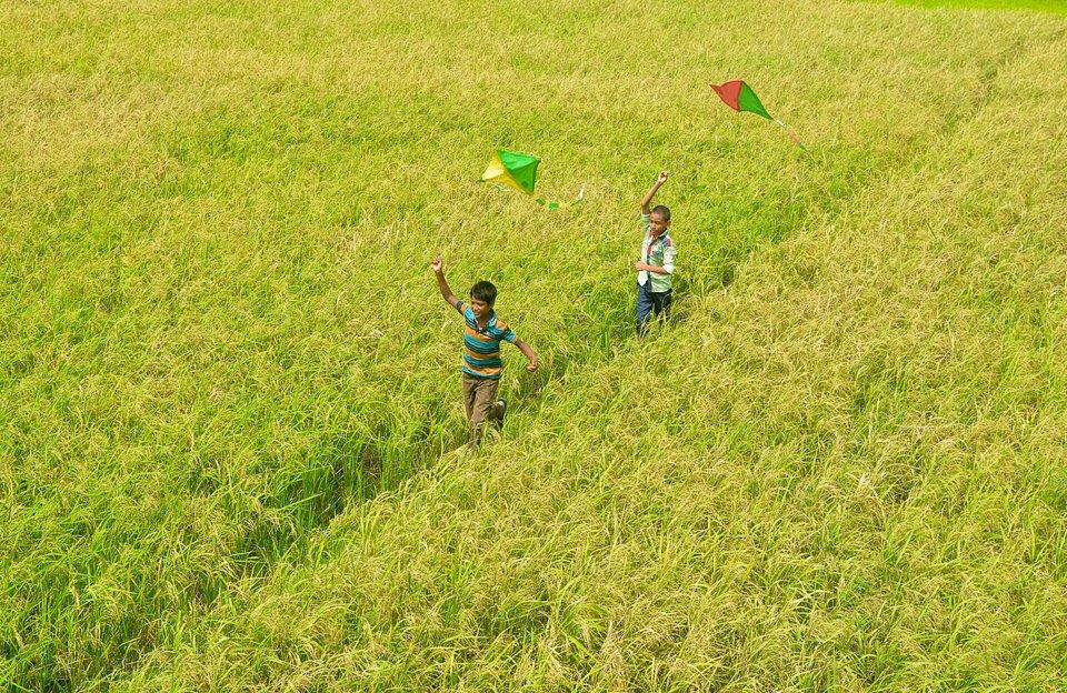 Location: Rangpur, Bangladesh