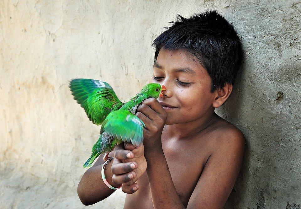 Location: Majhdia, West Bengal, India
