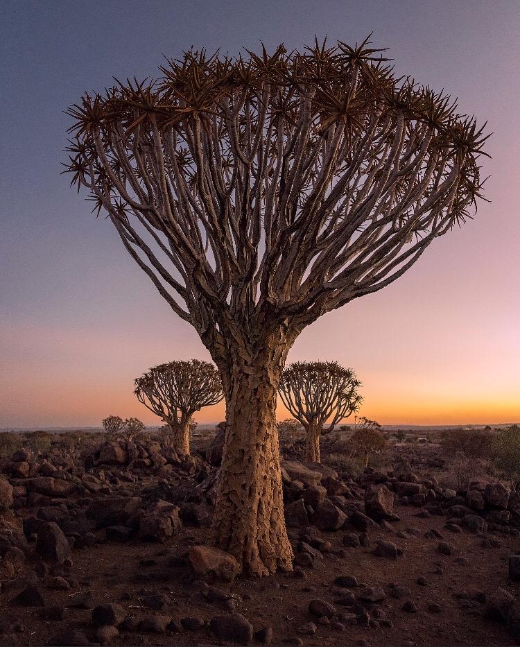 Location: Windhoek Rural, Namibia