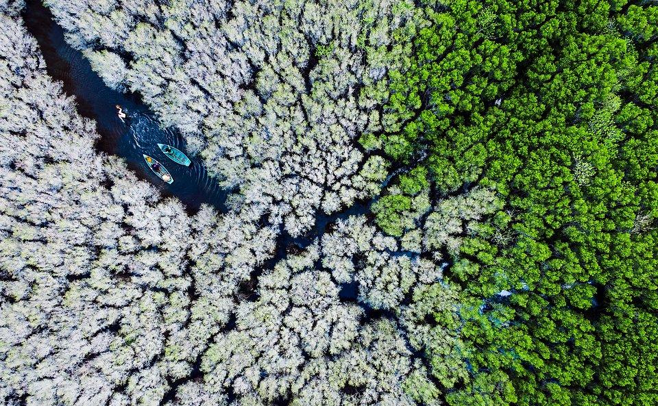 Location: Quang Ngai province, Vietnam