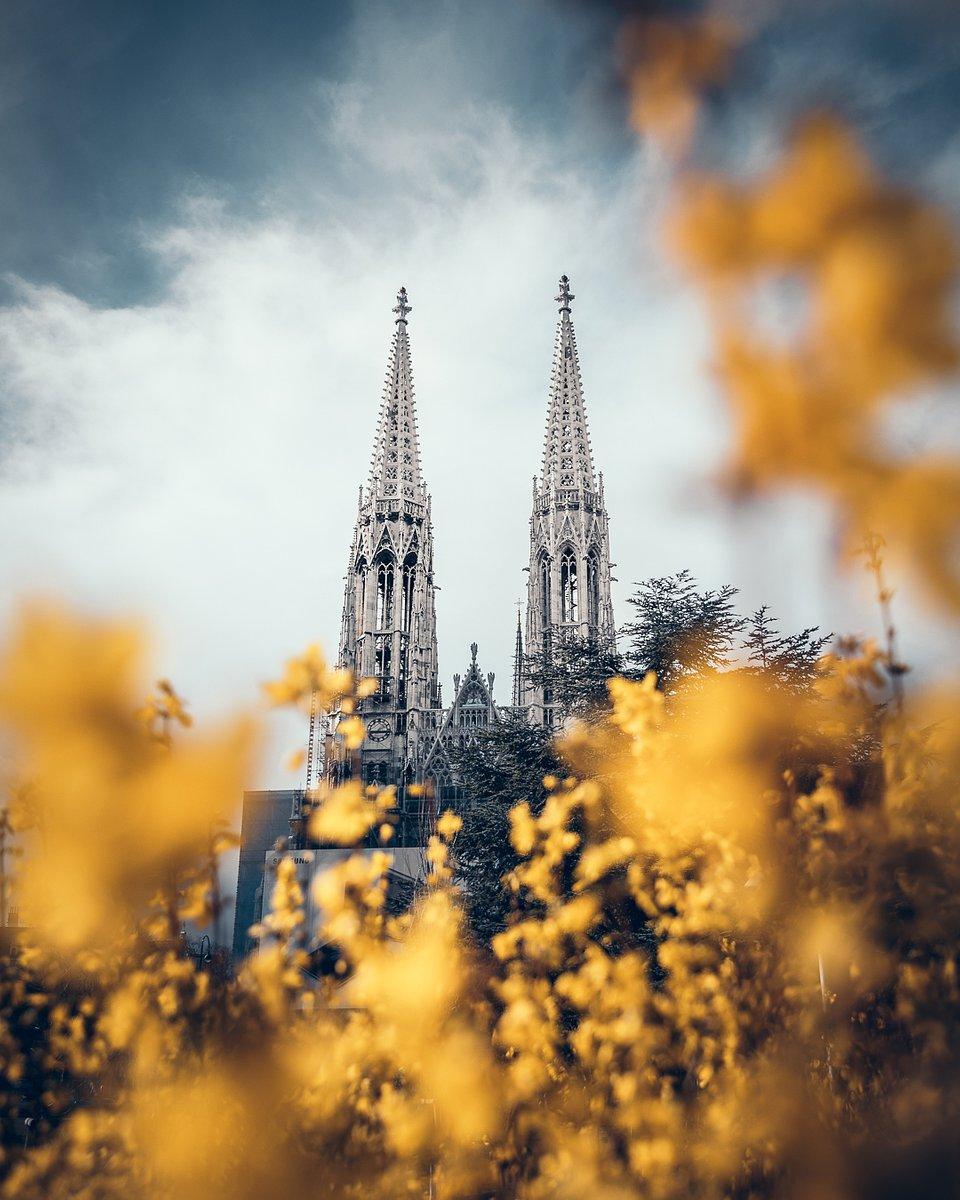 Location: Votivkirche, Vienna, Austria