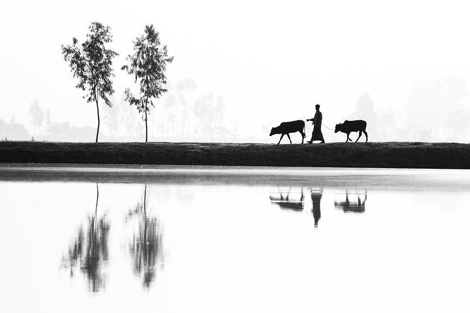 Location: Bangladesh