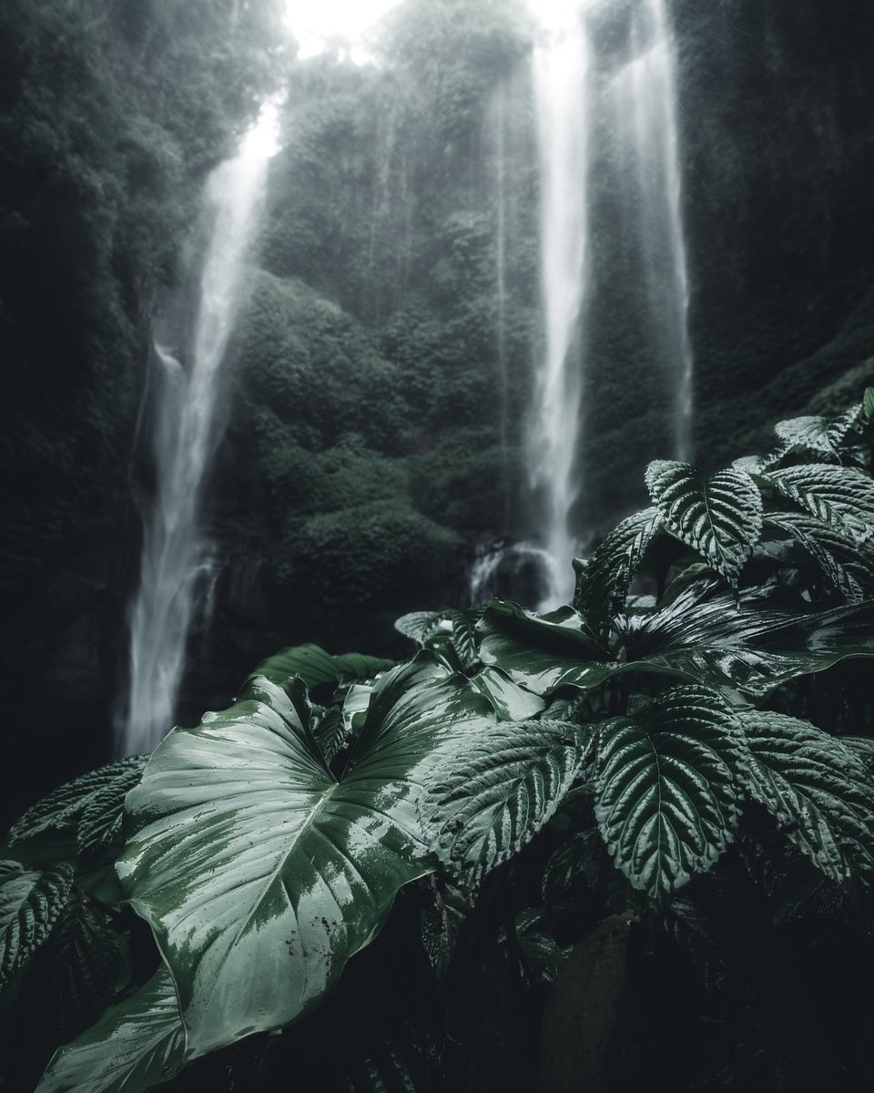 Location: Sekumpul waterfall, Bali, Indonesia