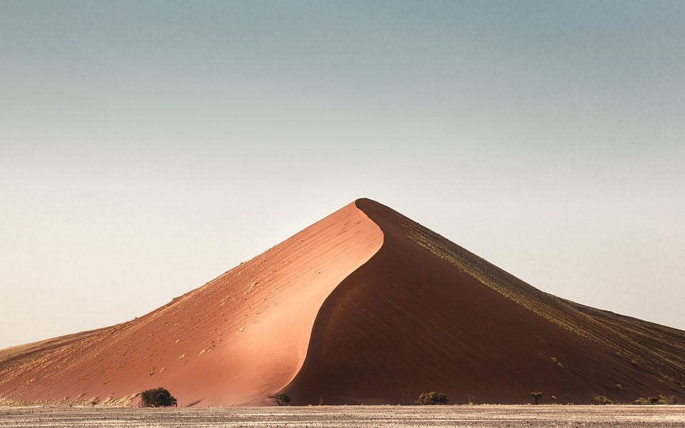Location: Namib Desert, Namibia