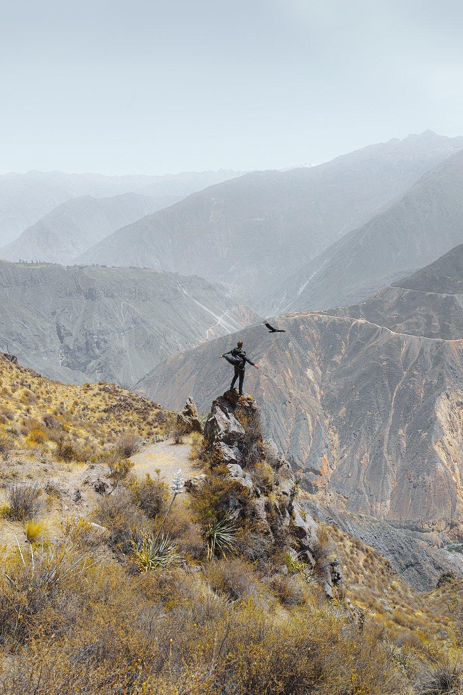 Location: Colca Canyon, Peru
