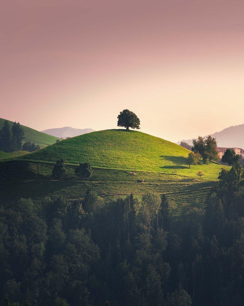 Location: Eastern Switzerland